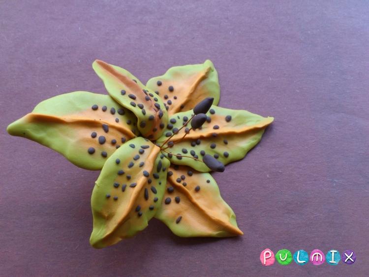 Как слепить цветок лилию из пластилина поэтапно - шаг 12