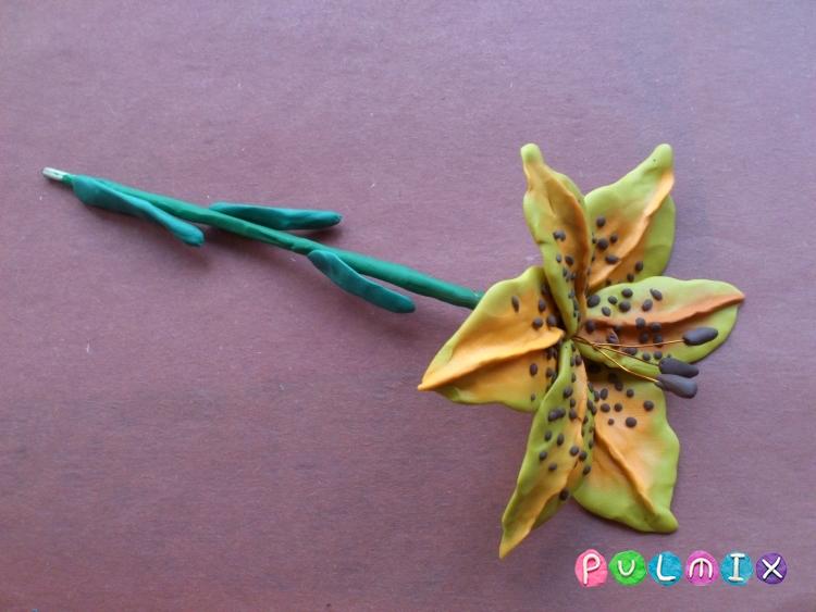 Как слепить цветок лилию из пластилина поэтапно - шаг 14