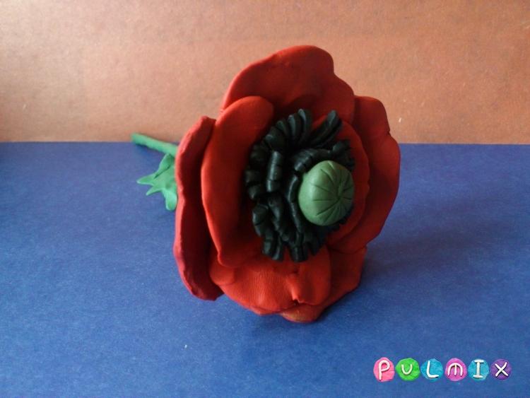 Как слепить цветок мак из пластилина поэтапно - шаг 12