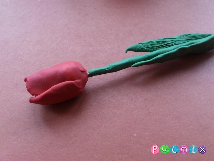 Как слепить тюльпан из пластилина поэтапно - шаг 12