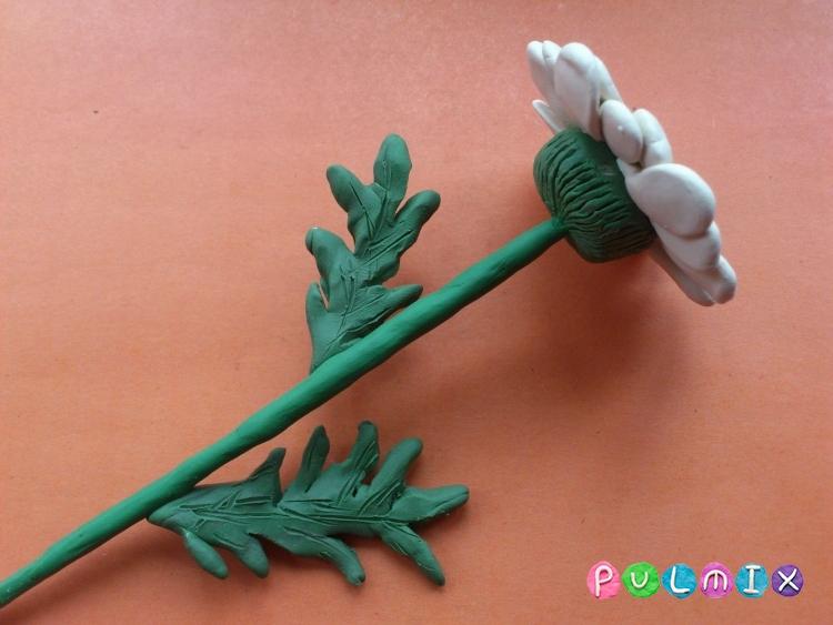 Ромашка из пластилина поэтапно с фото - шаг 14