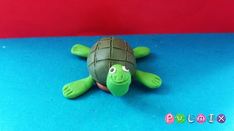 Как сделать черепаху из пластилина