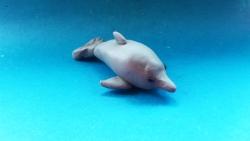 Как слепить дельфина  своими руками