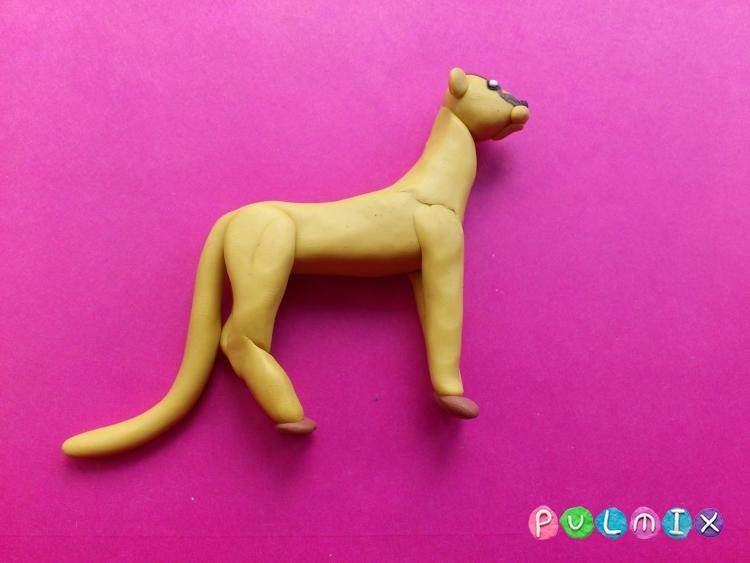 Как слепить гепарда из пластилина поэтапно - шаг 9
