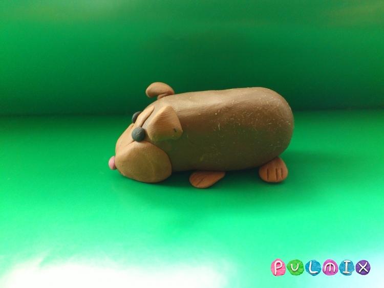 Как слепить морскую свинку из пластилина поэтапно - шаг 8