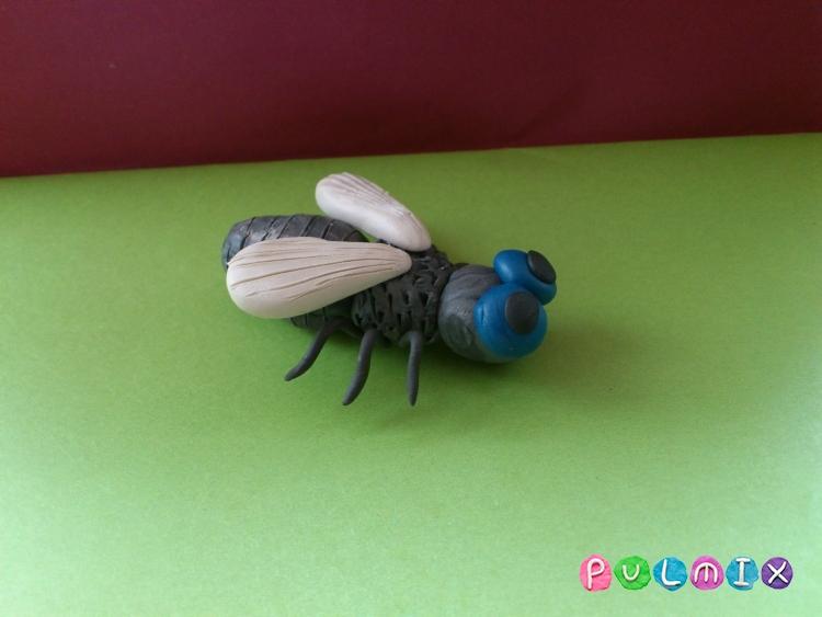 Как слепить муху из пластилина из пластилина - шаг 11