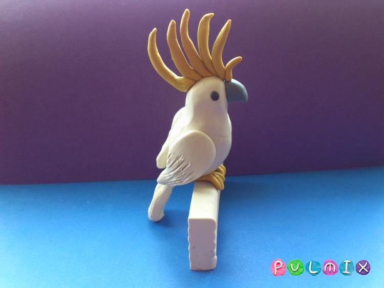 Как слепить попугая какаду из пластилина поэтапно - шаг 9