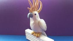Фотография попугая какаду из пластилина