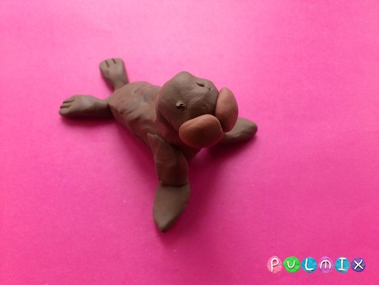 Лепим моржа из пластилина своими руками поэтапно - шаг 8